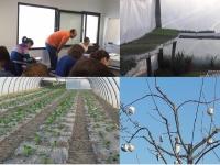 Cooperativa Terras de Besteiros promoveu formação financiada em Agricultura Biológica