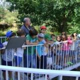 Crianças do Centro de Actividades Lúdicas da Associação de Educação Física e Desportiva de Tondela visitam estação rupestre de Molelinhos